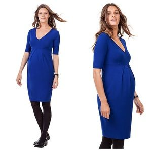 Isabella Oliver Roslyn Maternity Dress in Blue